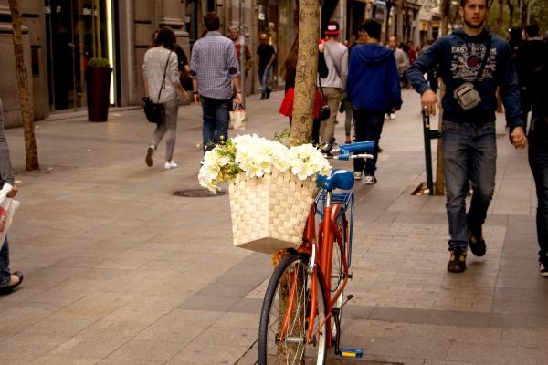 Primaverando (Fuencarral, Madrid)